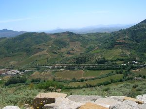 A view of the countryside from Segesta