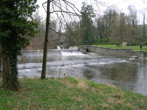 The park at Žleby