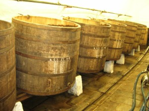 The barrels in the cellar