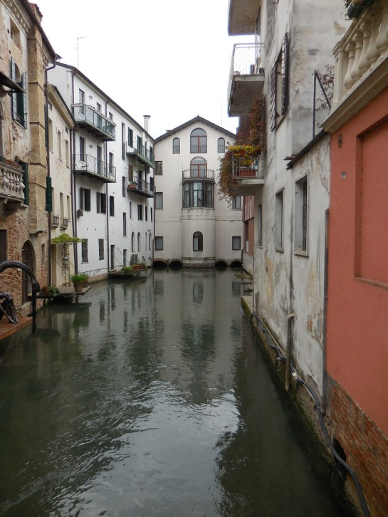 Treviso10canal