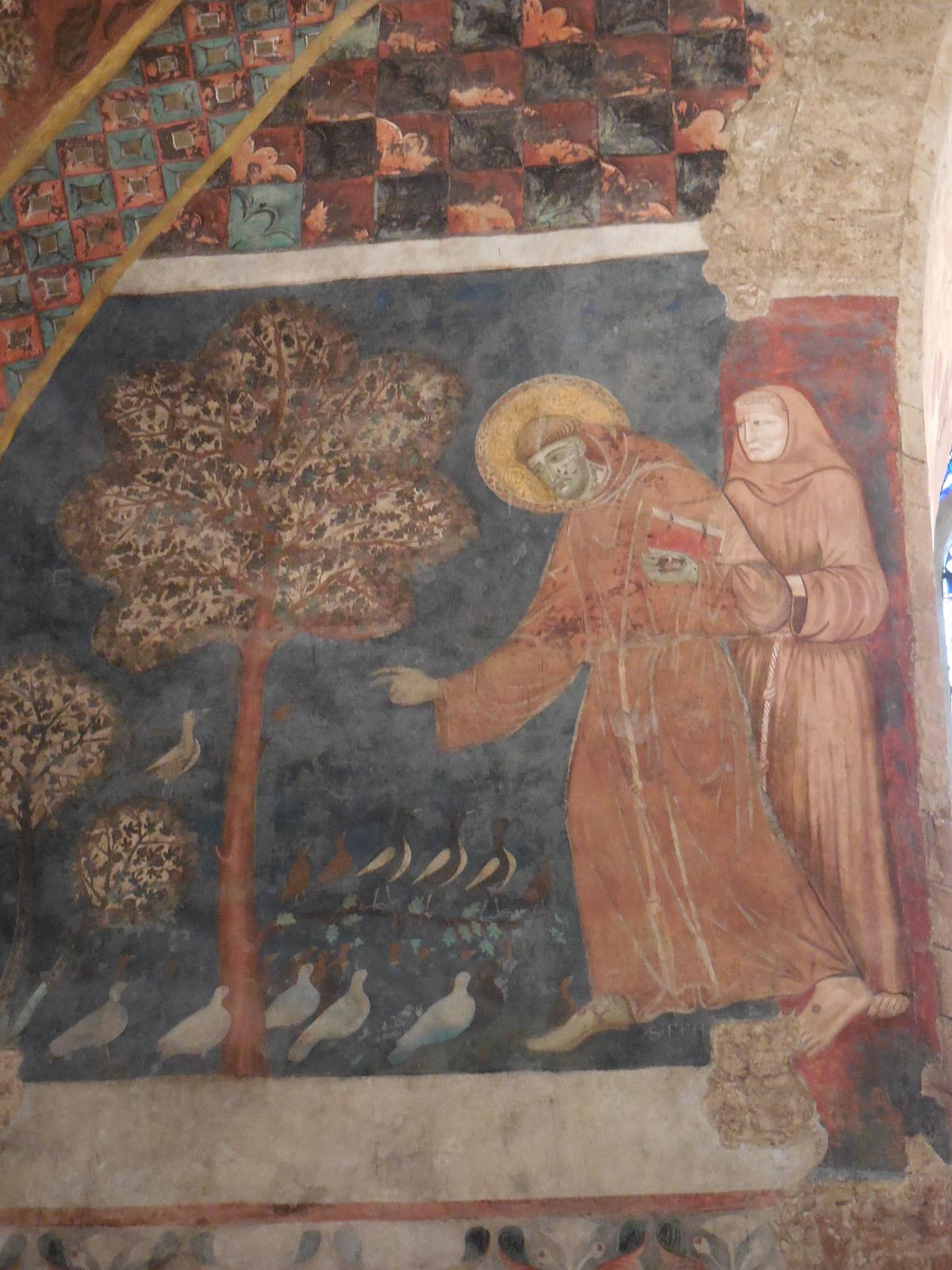Assisibasilicaint3