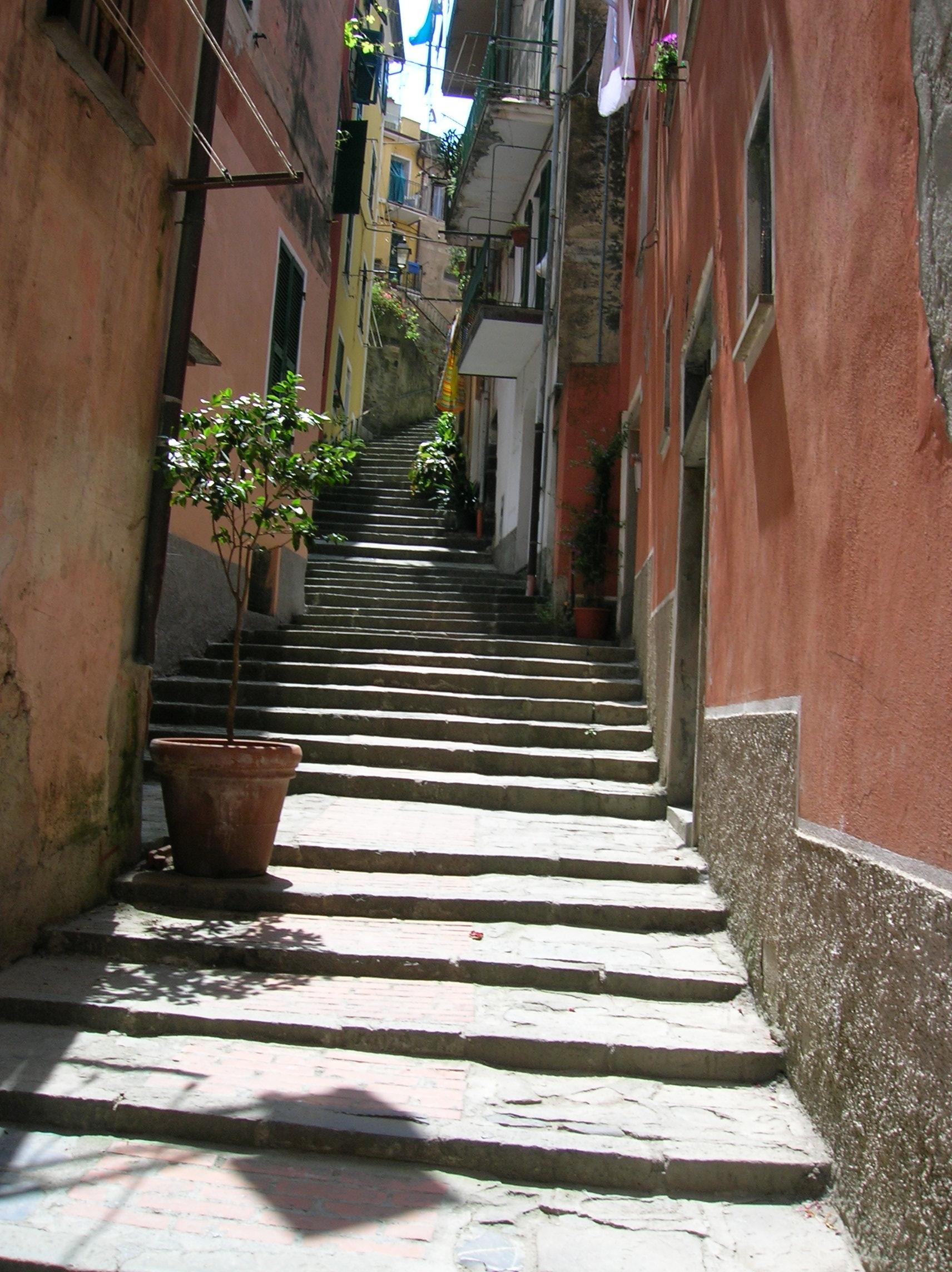 Cinque Terre street 1